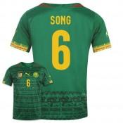 Maillot De Foot 2014/2015 Cameroun Domicile Coupe Du Monde (6 Song) Magasin Lyon