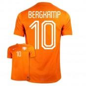 Maillot De Foot 2014/2015 Pays-Bas Domicile Coupe Du Monde (10 Bergkamp) Pas Chere